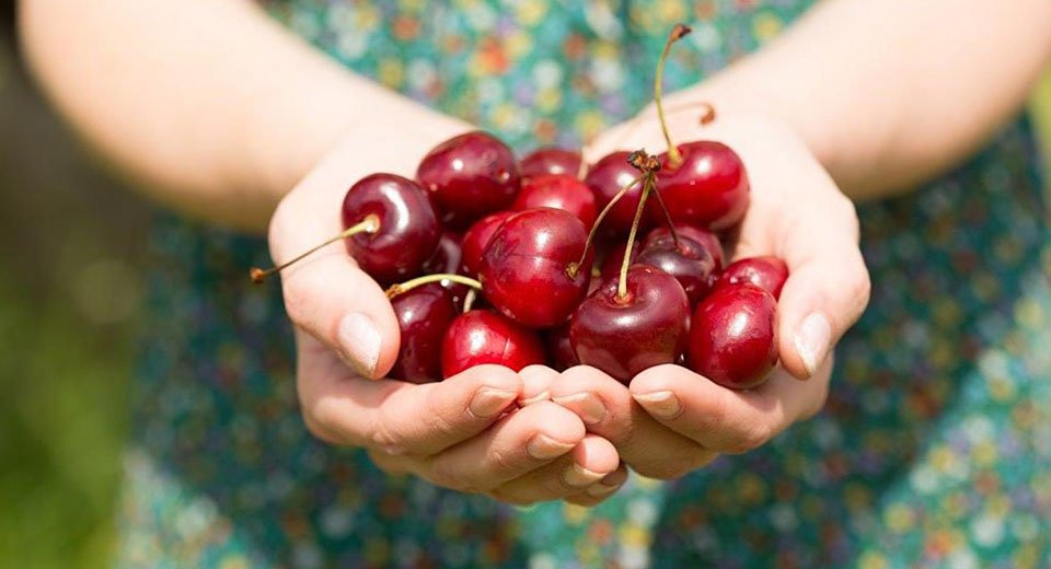 Why life really should be a bowl full of cherries