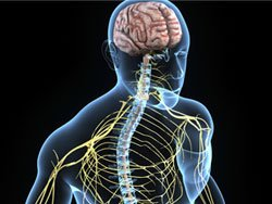 neurosurgical treatments