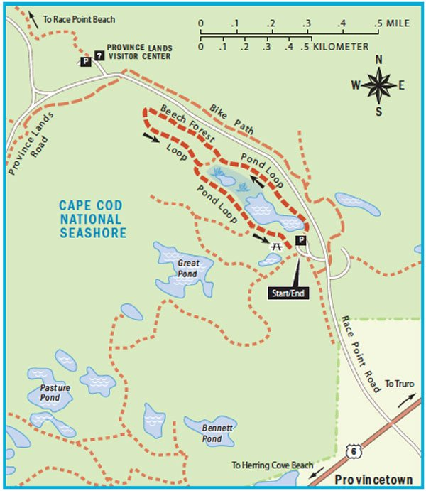 Beech Forest Trail map