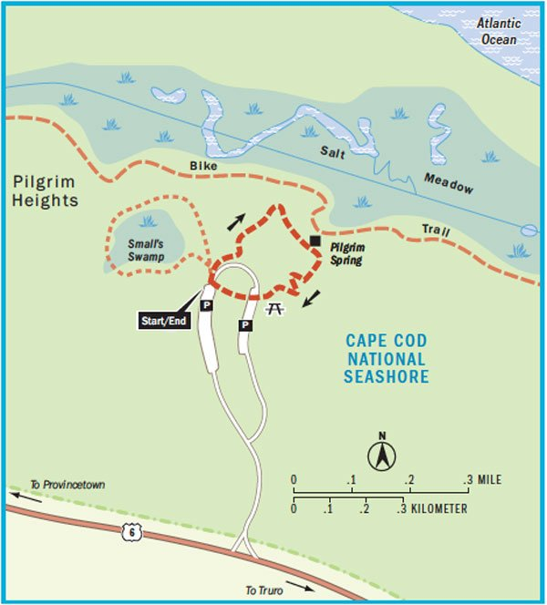 Pilgrim Swamp Trail map