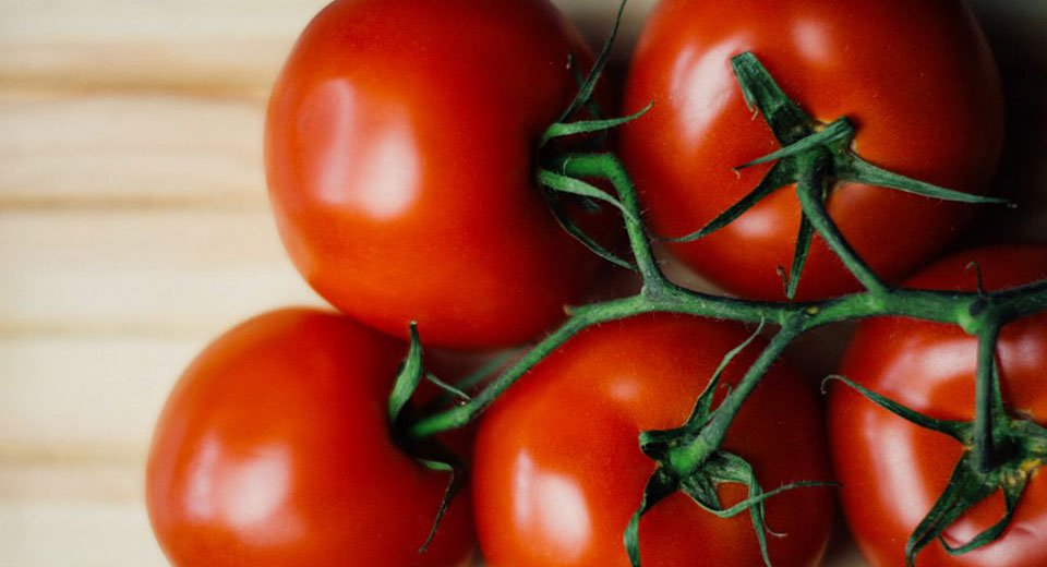 Are tomatoes causing that pain in your knee?